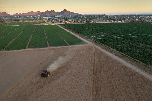 Arizona's water supplies are drying up. How will its farmers survive?