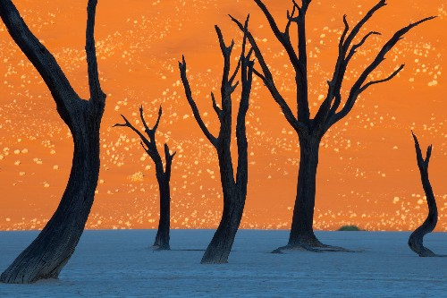 On World Environment Day, soak in these amazing Earth photos