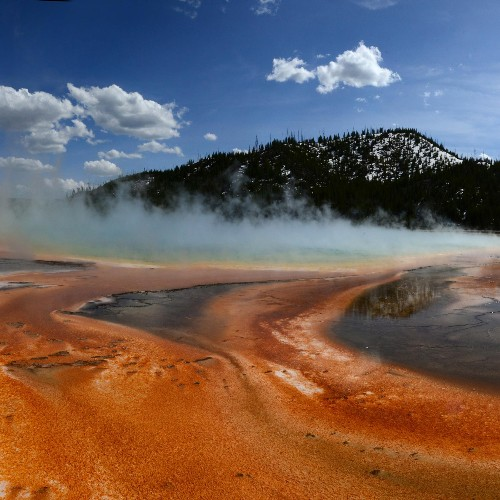 Key ingredient in coronavirus tests comes from Yellowstone's lakes