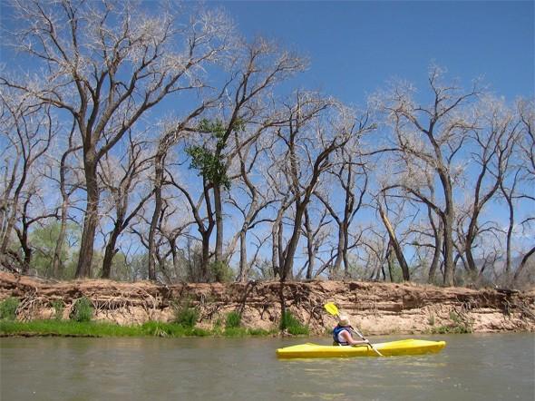Paddling the Rio Grande