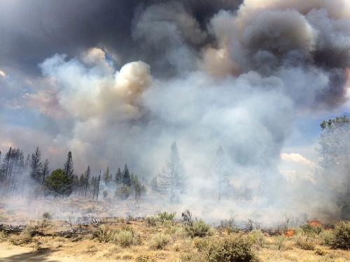 Wildfires Intensify in Pacific Northwest as Winds Rise