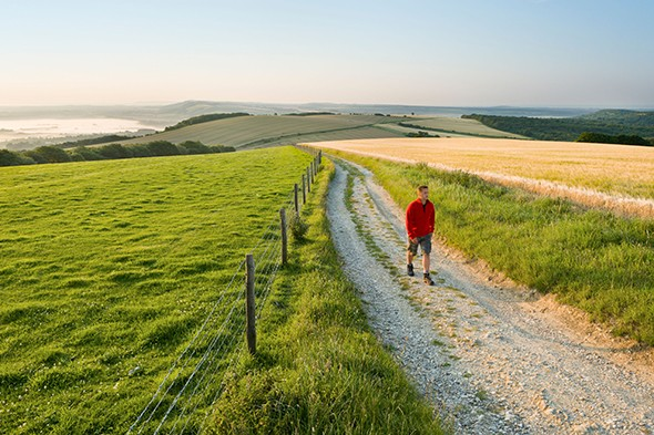 The Ultimate Digital Detox: Walking