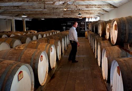 South Australia's Adventures of a Lifetime: Tour the Wine Trails