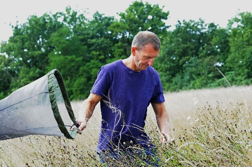 How One Man Made A Field In France Bloom With Wildlife