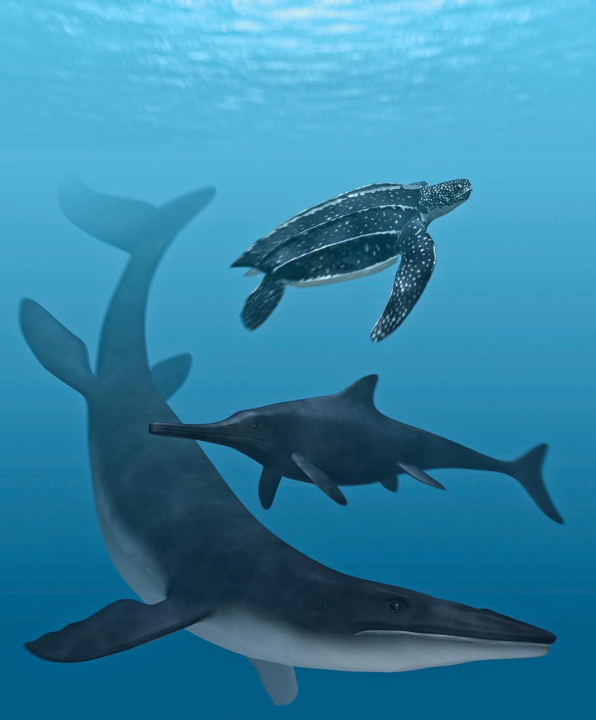 Dinosaur-Era Swimming Reptiles Had Black Skin