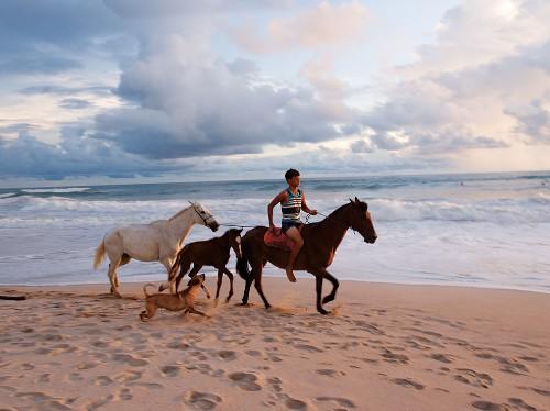 Costa Rica: La Vida Local