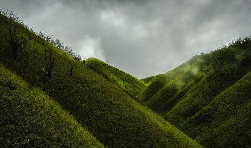 The Green Paradise Photo by Debarghya Sengupta — National Geographic Your Shot