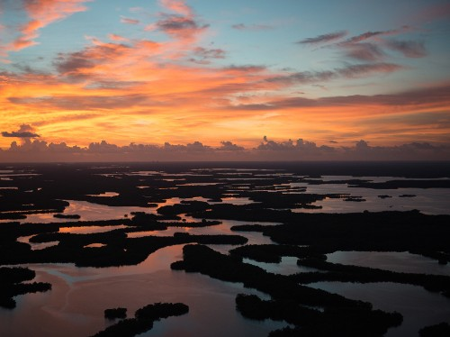 Florida's Pristine Parks: Ten Thousand Islands National Wildlife Refuge