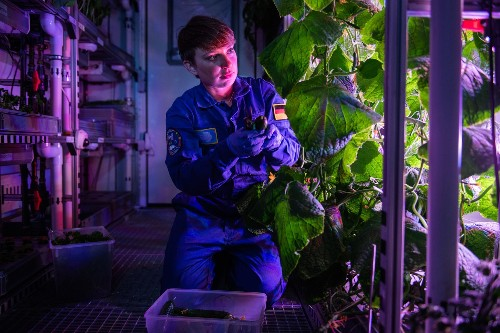 Want to grow plants in space? Go to the coldest place on Earth.