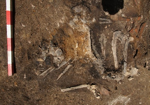 Burned Skeletons Are Rare Remains of Ancient Goth Invasion