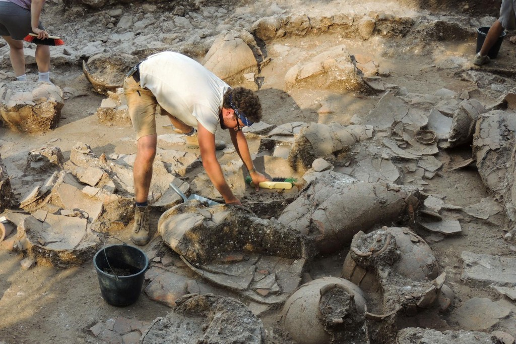 Viking DNA, a wine 'factory,' an abandoned palace, plus more recent discoveries - cover