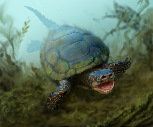"Paleo Profile: ""Miss Piggy"" the Prehistoric Turtle"