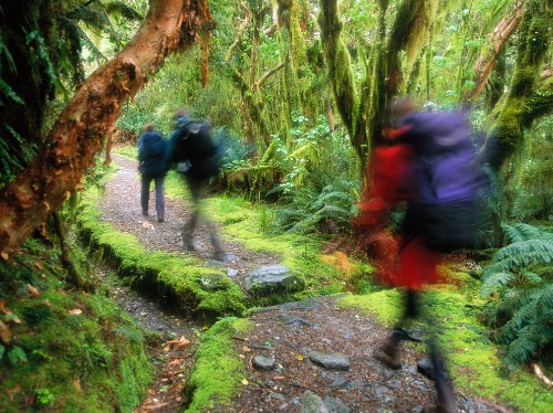 New Zealand's South Island: Adventure Country