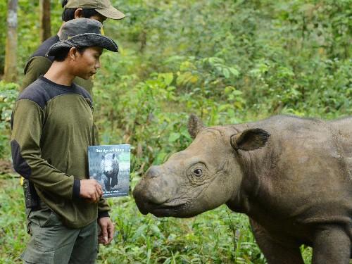 Schoolkids Write Book to Help Save Rhinos