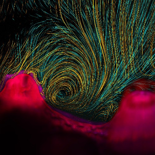 Pictures: Stunning Science Visualization Contest Winners