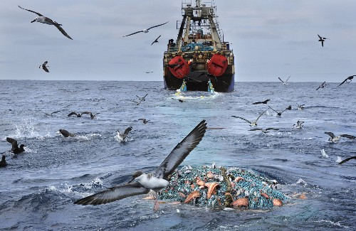 Global Ocean Commission Calls for Sweeping International Reforms