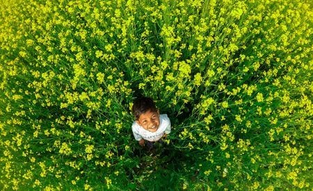 Lost in Colors Photo by Sourav Das — National Geographic Your Shot