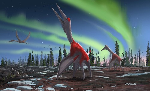New 'frozen dragon' pterosaur found hiding in plain sight