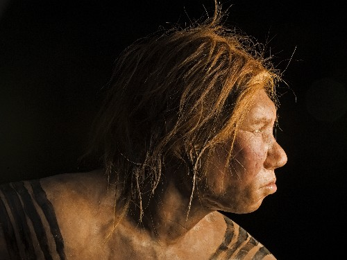 Gap Between Neanderthals and Us Narrows, But Does Not Close