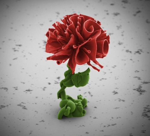 "Pictures: Nano ""Flowers"" Created in Lab"