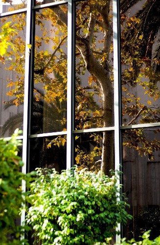 Autumn In The Window Photo by Ivete Basso — National Geographic Your Shot
