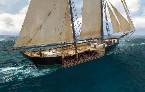 An Alabama shipwreck reveals the untold story of the international slave trade