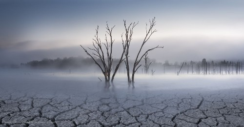 Parched Photo by Callie Chee — National Geographic Your Shot