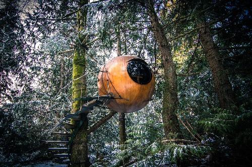9 Tree Houses You Can Actually Sleep In