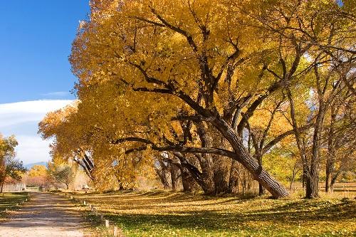 Best Fall Trips 2014