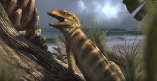 World's Oldest Lizard Fossil Found—What You Need to Know