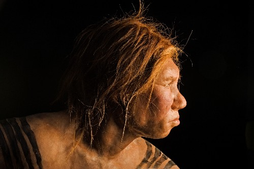 Did Dog-Human Alliance Drive Out the Neanderthals?