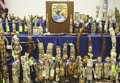 U.S. Ivory Dealer Victor Gordon Sentenced to 30 Months for Smuggling