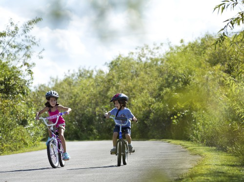 Florida by Land: Bike Off the Beaten Path