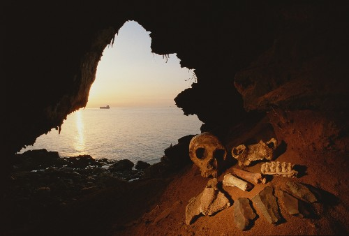Hot Stew in the Ice Age? Evidence Shows Neanderthals Boiled Food