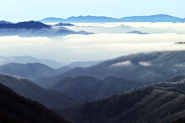 A Park Ranger's Guide to Great Smoky Mountains