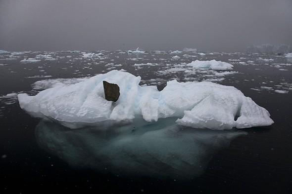 Calving Ice Sets Off Mini-Tsunamis Daily in Antarctica