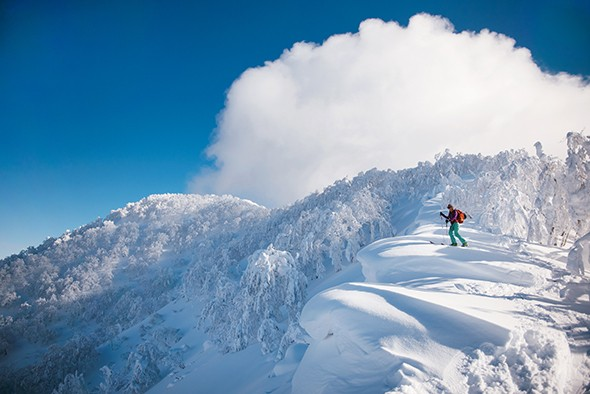 Skiing Ja-Pow: Chasing Winter in Remote Japan