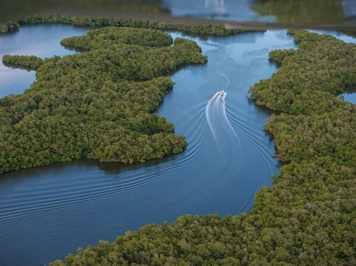 Discover the Largest Subtropical Wilderness in the U.S.
