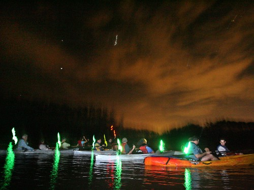 Florida by Water: Experience Bioluminescence