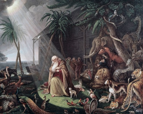 Noah (and his ark) Updated, Improved for Our Time