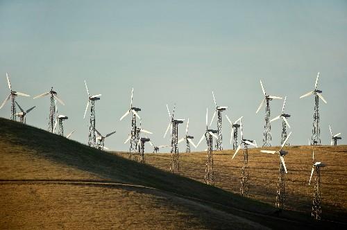 Will Newer Wind Turbines Mean Fewer Bird Deaths?