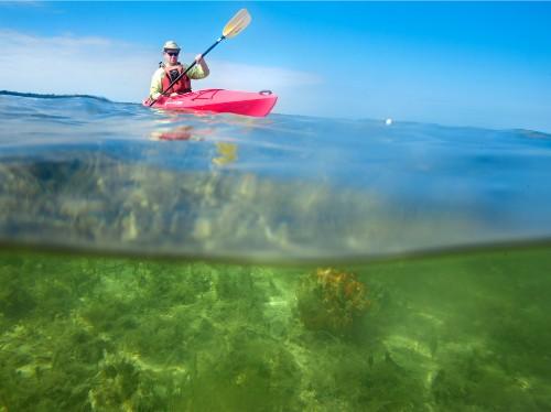 Florida by Water: Kayak Island Waters