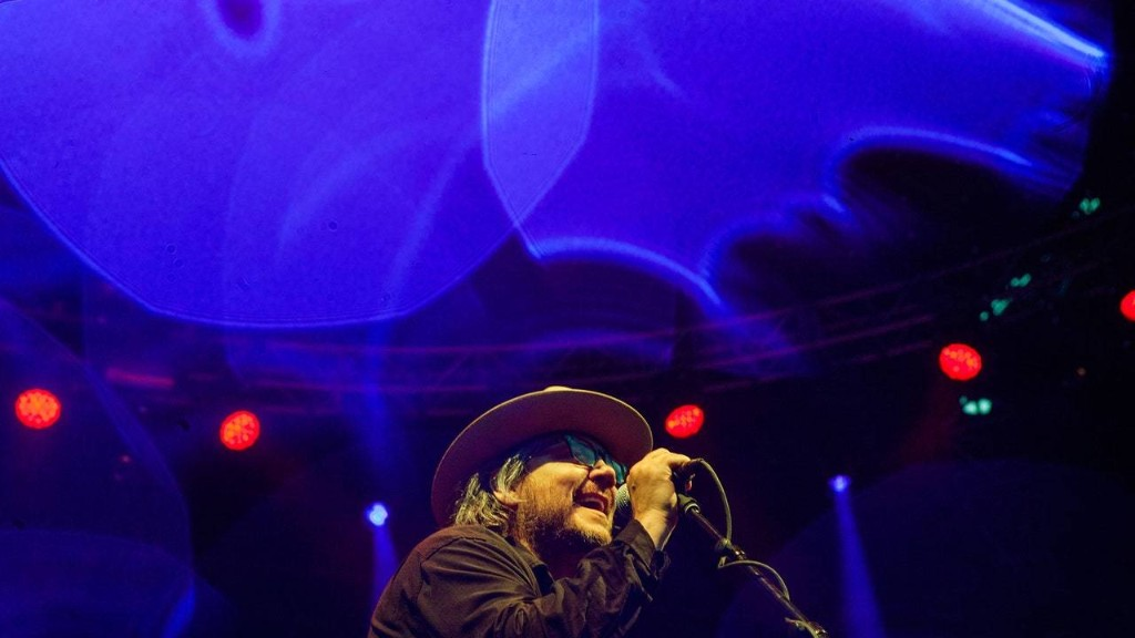 Wilco's Music for Adulthood