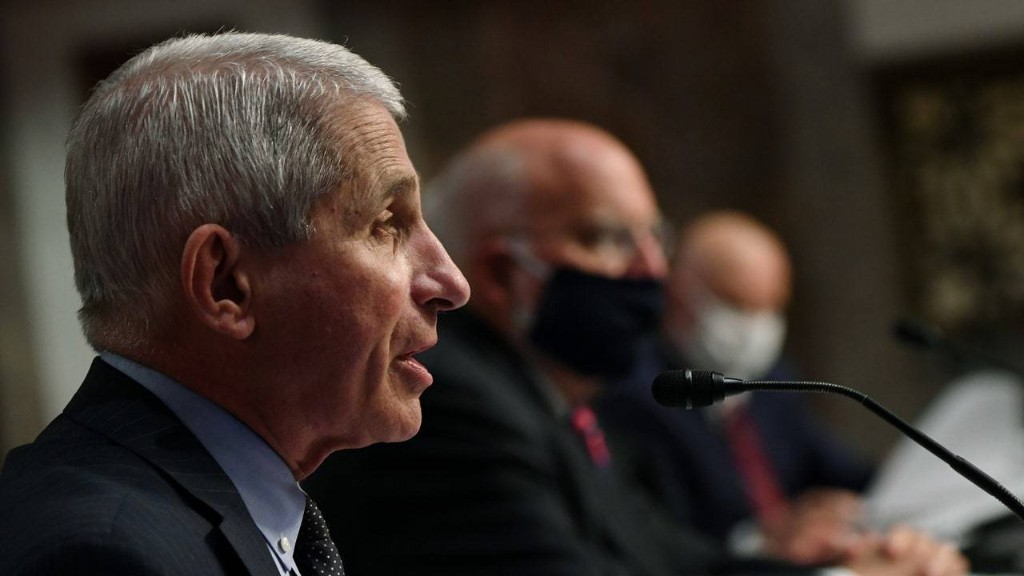 Anthony Fauci Is a Better Economist Than Donald Trump or Jared Kushner