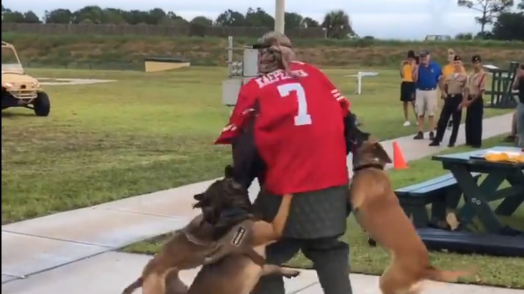 Navy Investigating Video Of K-9 Attack Demonstration Using Kaepernick Jersey