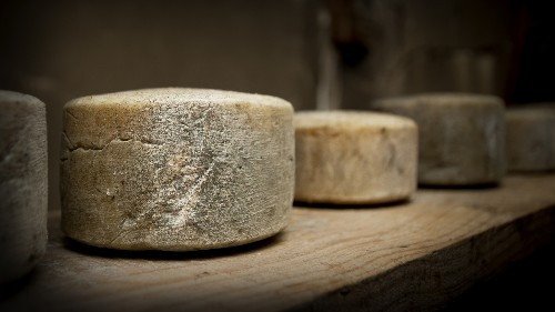 The Ancient Art Of Cheese-Making Attracts Scientific Gawkers