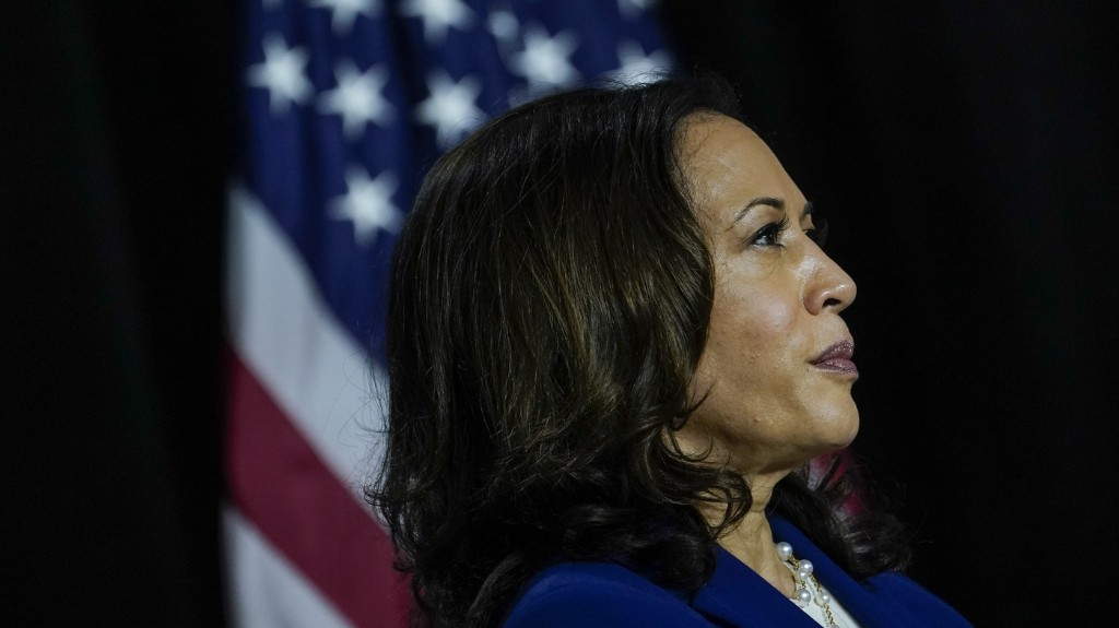 'Could Have Been Our Own': Harris Nomination Hailed As Win For Representation
