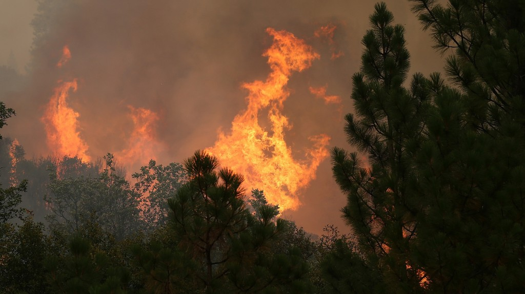 Yosemite Fire Called One Of Largest In Recent California History