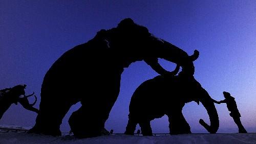 Report Of Liquid Woolly Mammoth Blood Prompts Clone Talk