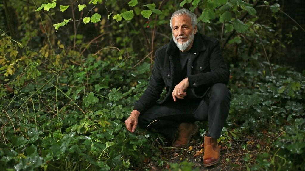 Yusuf Revisits 'Tea For The Tillerman,' His Landmark Album As Cat Stevens